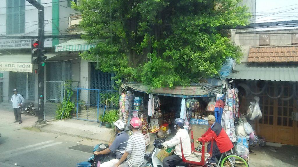バス車窓 ベトナム車道