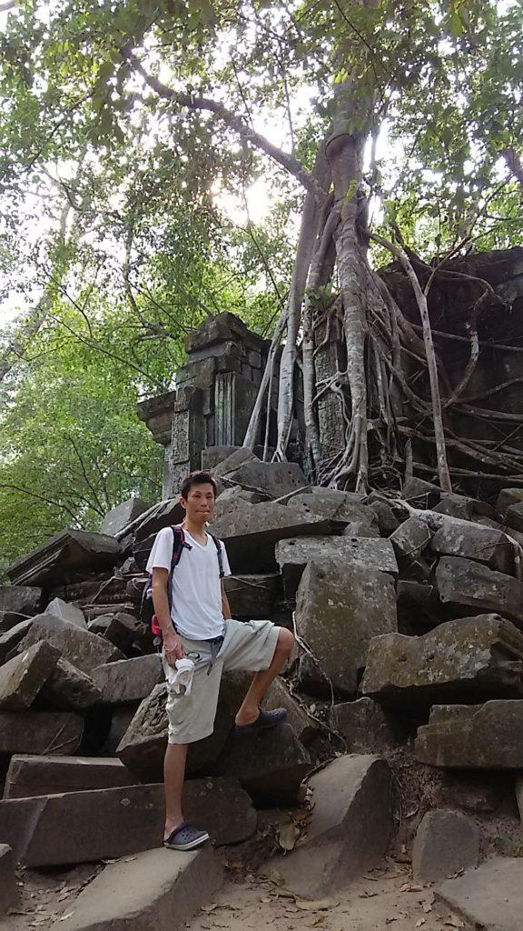 ベンメリア外 木の根