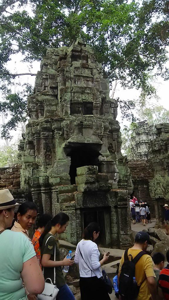 タ・プローム寺院 遺跡2
