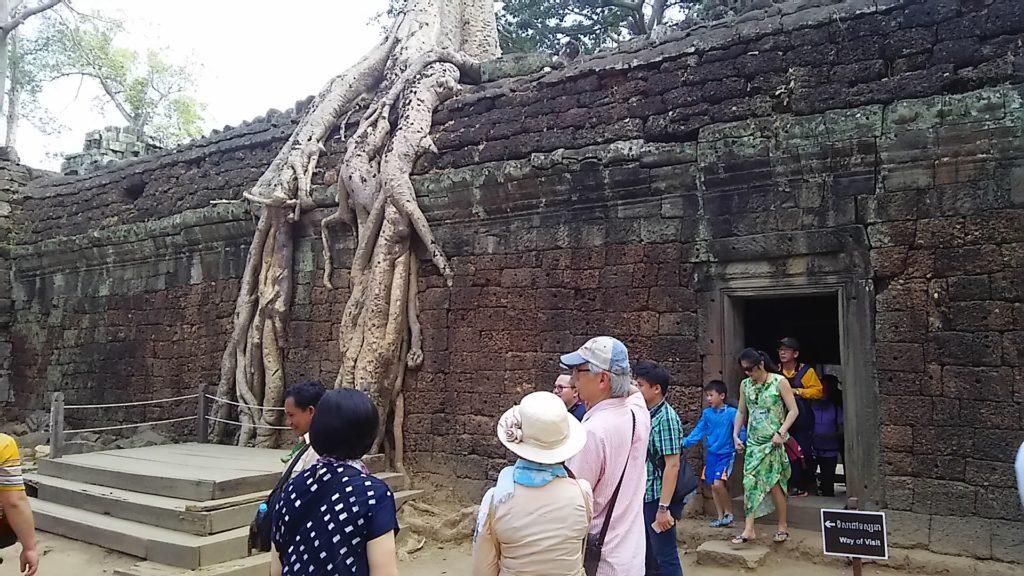 タ・プローム寺院 遺跡7